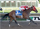 Graded Stakes Winner Autism Awareness Dies