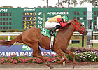 Awesome Chic Skims Rail in Florida Oaks