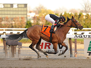 Awesome Feather Going For Ninth Straight Win Bloodhorse Com