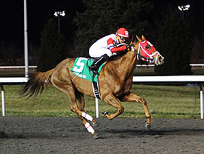 Awesome Flower wins the 2014 Wintergreen Stakes.