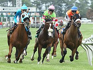 Az Ridge wins the 2015 Brooks Fields Stakes.