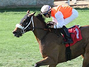 Az Ridge wins the 2015 Hasta La Vista Handicap.