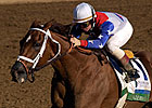 Jockey Romero, Three Horses to Hall of Fame
