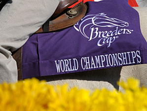 Breeders' Cup Considers Tougher Drug Policy