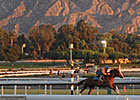 Breeders' Cup Early Forecast: Sunny and Cool
