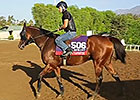Breeders' Cup News Update for October 30, 2014