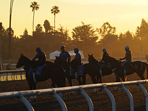 Breeders' Cup Weather and TV Schedule