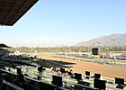 Perfect Weather for Breeders&#39; Cup Saturday