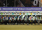 Breeders&#39; Cup Will Not Expand Furosemide Ban