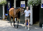 Saratoga Sale Preview 2012