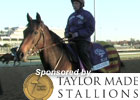 Breeders&#39; Cup News Minute: 11/01/11 (Video)