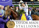 Breeders' Cup 2011 Day 2 Wrap