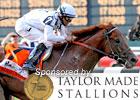 2010 Belmont Stakes Wrap