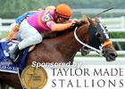 2011 Belmont Stakes Wrap