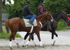 Belmont News Minute - 6/4/2012