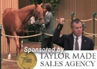 Keeneland Sept Sale Wrap: Day 2