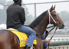Kentucky Derby News Minute 5/1/2012