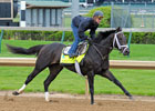 Kentucky Derby News Minute - 4/27/2013