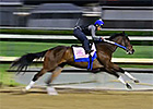 Kentucky Derby News Update for April 27, 2014