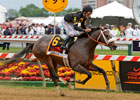 2013 Preakness Stakes Wrap