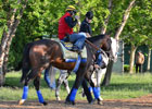 Preakness News Minute 5/18/2012