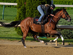 Big Brown working at Churchill Downs on May 1, 2008.