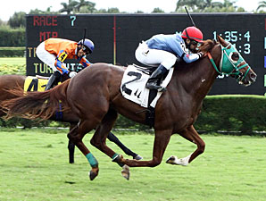 Backseat Memories wins the Mambo Meister Stakes.