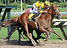 Backtalk Draws Post 13 For Hopeful