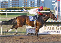 Badge of Silver Sizzles in Fair Grounds Return