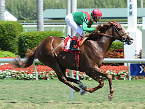Badleroibrown Maiden Win February 18, 2012.