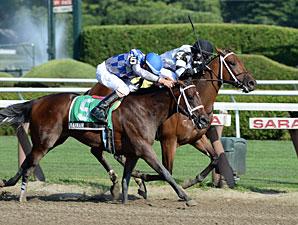 Bahnah and Brazen Persuasion dead heat in the 2013 Schuylerville.