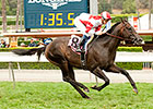 Bal a Bali to Try Grade I in Shoemaker Mile