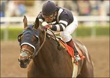 Dual Grade I Winner Balance Returns in La Brea