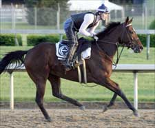 Full Field of 14 to Run for the Oaks; Balance Early Favorite