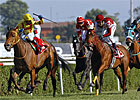 Strike the Gold Sires Turkish Oaks Winner