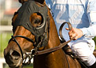 Ball Four to Appear at Keeneland April 16