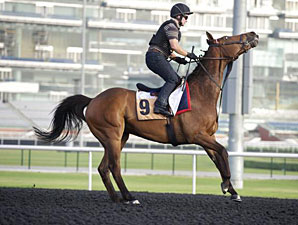 Balmont Mast - Dubai, March 26, 2013.