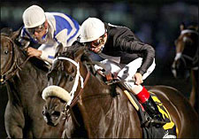 Balto Star Out of Breeders' Cup Due to Tendon Injury