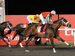 Bankable Swoops Late to Take Mahab Al Shimaal