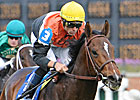 Banned Storms Home in American Turf