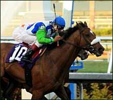 'Barbaro' Documentary by HBO Sports to Air in June