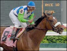 Barbaro to Start from Post 6 as Even-Money Choice