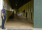 O'Neill Delays Move to Belmont Stakes Barn