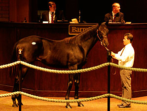 Bertrando Yearlings Top Barretts' First Day