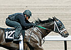 Barretts Horses to Watch