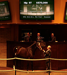Biancone Signs for $570,000 War Front Colt