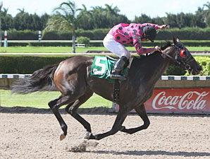 Battle of Love wins the 2011 Three Ring Stakes.