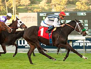 Bauble Queen wins the 2012 Frankel.