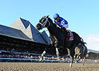 Bay of Plenty Wire to Wire in Alydar Stakes