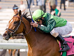 Guineas Winner Bay to Bay in Boiling Springs